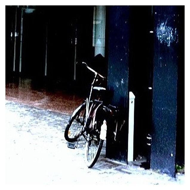 20111127 110552 Bike at cityhall