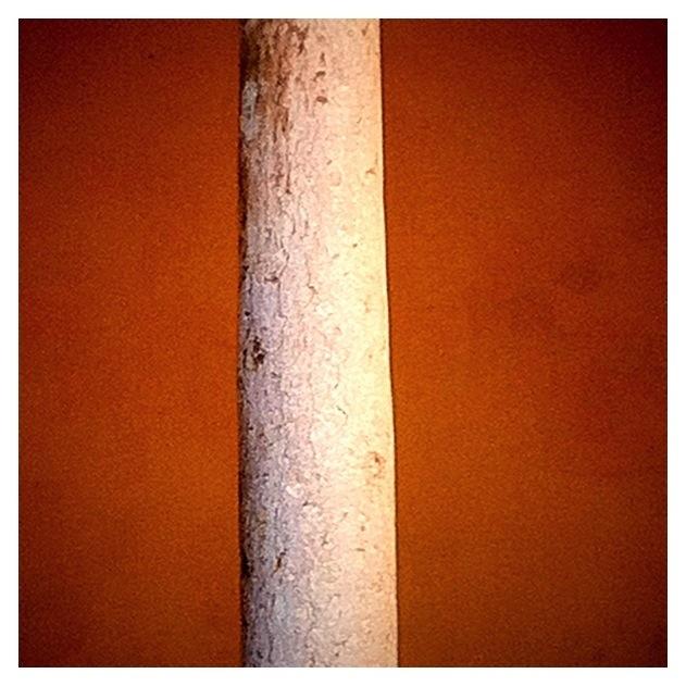 20111130 155440 Mesquita 3
